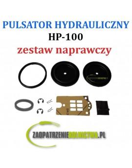ZESTAW NAPRAWCZY PULSATORA HP-100 10-EL