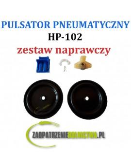 ZESTAW NAPRAWCZY PULSATORA HP-102 6-elementów