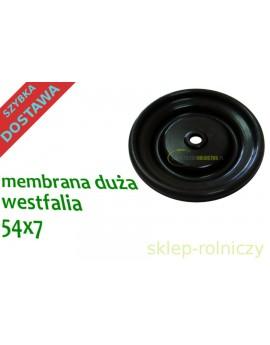 MEMBRANA DUŻA WESTFALIA 54X7