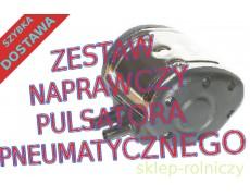 PULSATOR PNEUMATYCZNY 60/40 AMIR